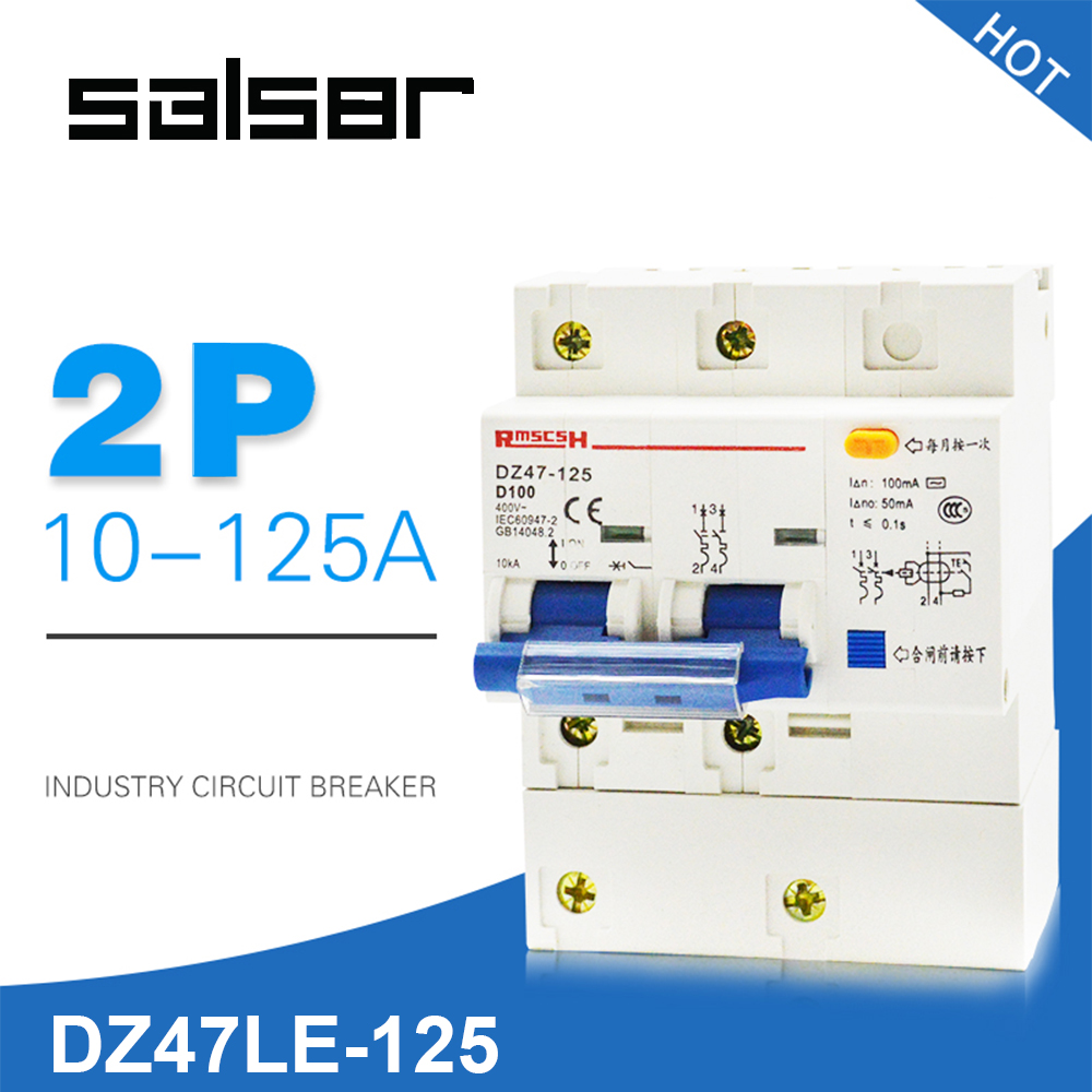 D Type DZ47LE-100 Electric Leakage Circuit Breaker Switch Household Protect 2P Small-sized Atmosphere SwitchD Type DZ47LE-100 Electric Leakage Circuit Breaker Switch Household Protect 2P Small-sized Atmosphere Switch