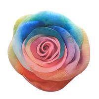 45 45cm Digital Print Colorful Flower Pillow 3D Cushion Waist Back Pillow Home Living Room Car