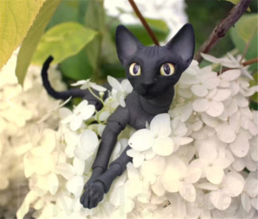 BJD / SD doll fashion hairless cat high-quality toys birthday gifts for saleBJD / SD doll fashion hairless cat high-quality toys birthday gifts for sale