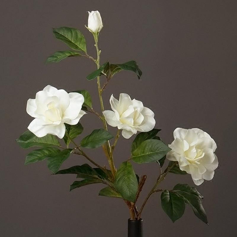 compare prices on white gardenia flower online shopping/buy low, Natural flower