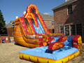 FREE SHIPPING BY SEA Popular Commercial Inflatable Slide ,Inflatable Slide With Pool For Sale