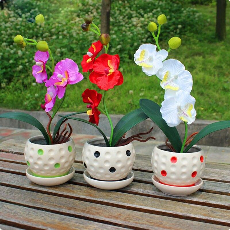 22 сортов карликовые деревья горшок цветы старший декоративная Орхидея домашние, садовые растения крытый 200 шт. фаленопсис Орхидея