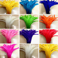 Wholesale! 500 PCS of beautiful rooster tail / 30 35 cm 12 to 14 inches