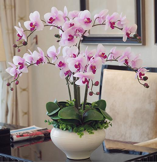 Orchid Phalaenopsis Real Touch Flower With Leaves Artificial Orchids