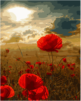 New Acrylic Paint Oil Painting Poppy Home Decoration By Numbers Frameless Picture On Wall Diy Painting
