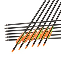 Hunting Shooting Top Selling 12pcs Lot 762mm Archery Fiberglass Arrows With Changeable Arrowheads And Plastic Feathers
