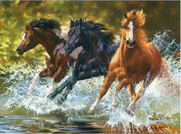 40x50cm Diy Oil Painting Gift Coloring By Numbers Colorful Tread Water Horse Hand Painted Canvas Oil