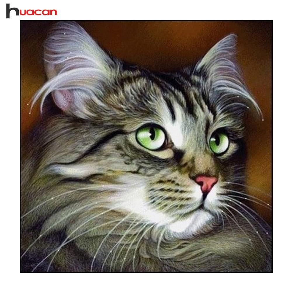 Huacan 5D DIY алмаз живопись животных Алмазная мозаика вышитые кошка узор Хобби & ремесла украшения дома подарки