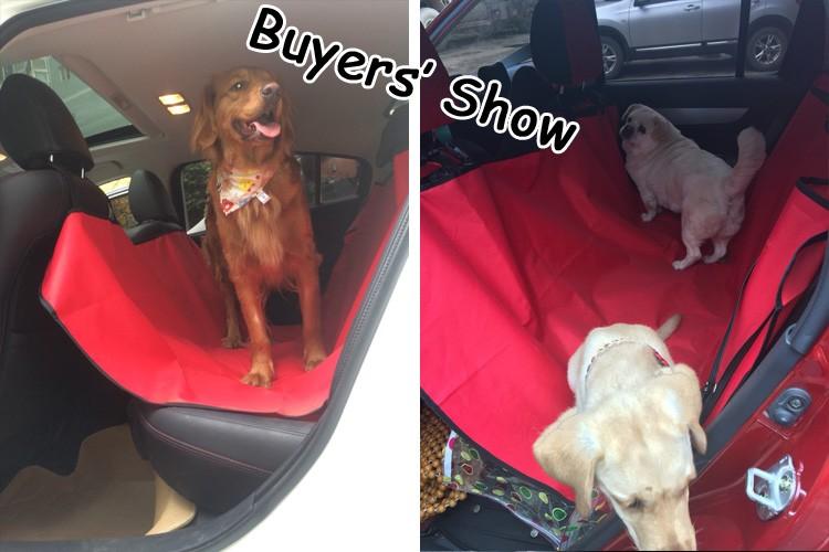 buyers_show_4