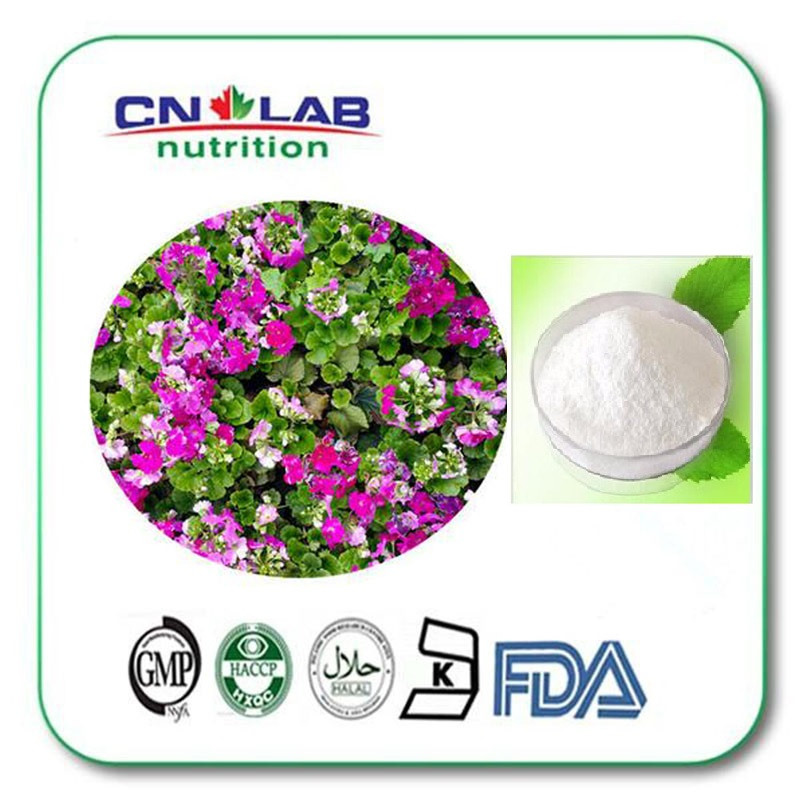 Best Price Geranium Extract DMAA/Geranium Extract powder 1kg/ lot tremella fuciformis extract polysaccharides 10 1 powder 100g lot
