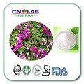 Mejor Precio Geranio Extraer DMAA/Geranio Extracto en polvo 1 kg/lote