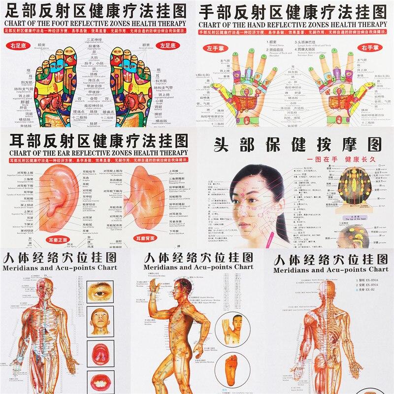 7 pz/set Punto di Agopuntura di Massaggio Mappa Cinese e Inglese Meridiano Digitopressione Punti Manifesti Grafico Wall Map For Medical Teaching