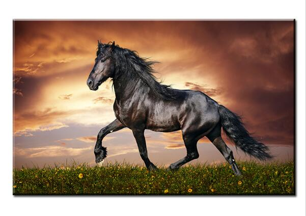 artisan sch ne schwarze pferd wandmalerei druck auf leinwand f r wohnkultur lgem lde kunst. Black Bedroom Furniture Sets. Home Design Ideas