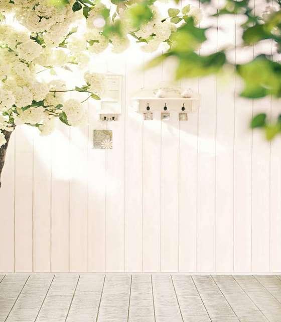 On Sale Tr White Backdrop Flower Tree Wood Floor Indoor