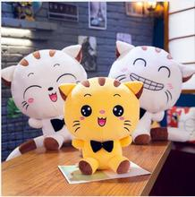 WYZHY  Plush Toys Cute Cat Doll Big Face Pillow Valentines Day Gifts Girlfriends Childrens Birthday 80CM