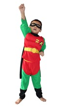 Robin Muscle Costume