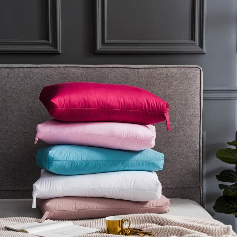 2 pièces 48*74 cm literie oreiller remplissage Rectangle oie/canard vers le bas lit cou oreillers duvet-preuve coton tissu almohada oreiller