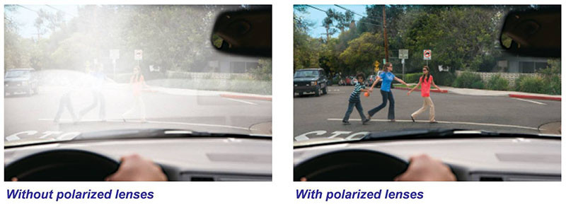 polarized 01