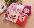 Los niños/niños/niñas bebés Ropa Interior Escritos de las Bragas Elsa anna princesa dora minie ropa interior de dibujos animados winx (2-14 años)