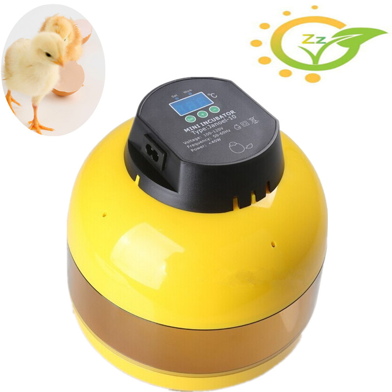1Pcs/Lot 2017 New Egg Candler Poultry Hatcher Chicken Goose Quail Duck 10-Egg Mini Egg Incubator 60 eggs incubator new design jn5 60 mini egg incubator poultry hatcher egg chicken quail duck incubator