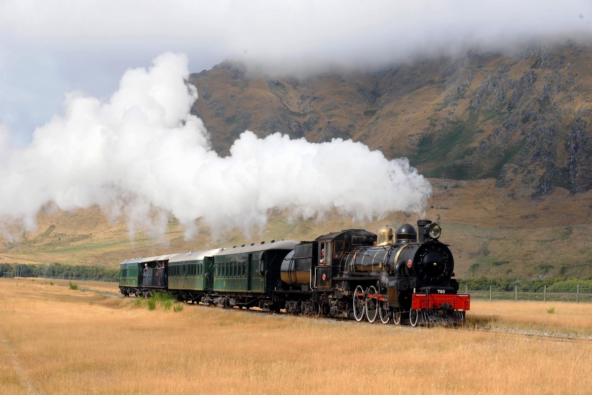 trains vehicles locomotives tracks nature field railroad HC101 home wall modern art decor wood frame poster