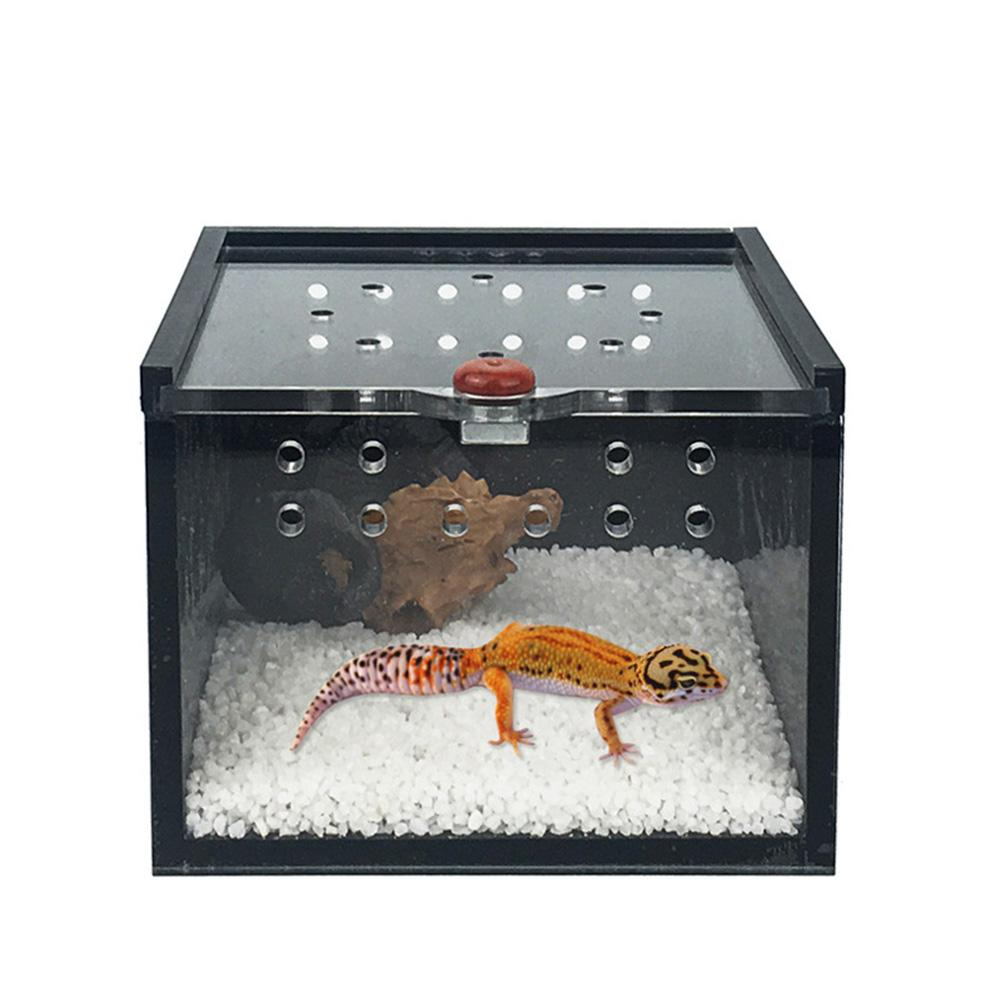 Feeding-Box Pet-Cage Frog Cricket-Turtle Reptile-House Keeper Acrylic Black For Spider