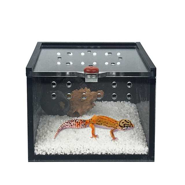 Us 4 47 32 Off Black Acrylic Pet Cage Feeding Box For Spider Lizard Frog Cricket Turtle Pet Breeding Keeper Reptile House In Insect Supplies From