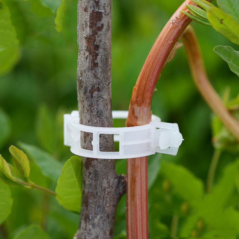 50pcs/100pcs Durable 30mm Plastic Plant Support Clips For Types Plants Hanging Vine Garden Greenhouse Vegetables Garden Ornament
