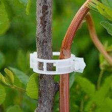 50 шт./100 шт. прочные 30 мм пластиковые зажимы для поддержки растений для типы растений, Висячие лозы, садовые теплицы, овощи, садовые орнаменты