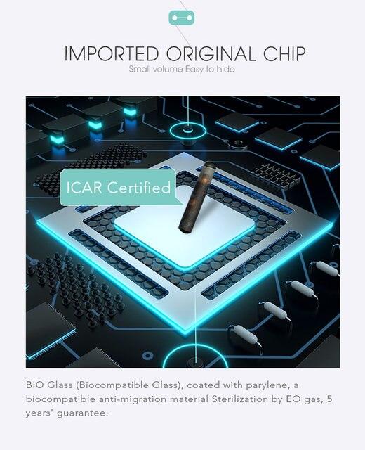 Original chip