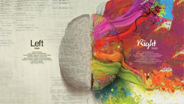 left and right brain differences education poster home decor custom
