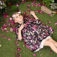 2015 Spring Autumn Little Bird Print Lace Princess Party Girls Dresses Style Knee Length Baby Children