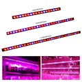 1pcs 54W/81W/108w Waterproof Led Grow Lights Bar LED Plant Strip Lamp Red/Blue for winter vegetables Lighting indoor greenhouses