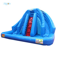 OEM Lovely Small Inflatable Slides With Water Pool For Commercial Use