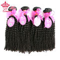 Queen Hair Products 4pcs lot Virgin Brazilian Afro Kinky Curly Virgin Human Hair Can Be Dyed Brazilian Virgin Hair Human Hair