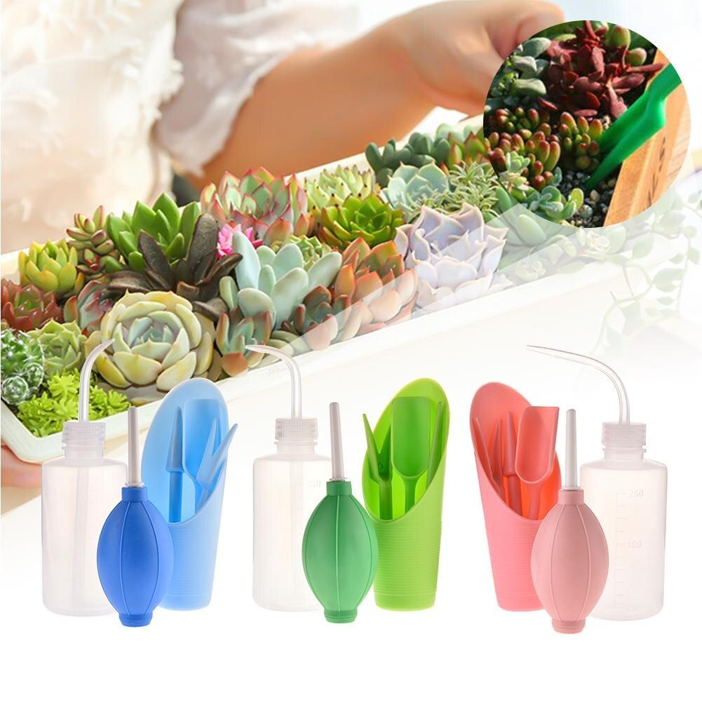 6 pièces/ensemble outils de jardinage plantes succulentes Kit de plantation Set vaporisateur bouteille + seau pelle + souffleur fort + perforateur plante greffage