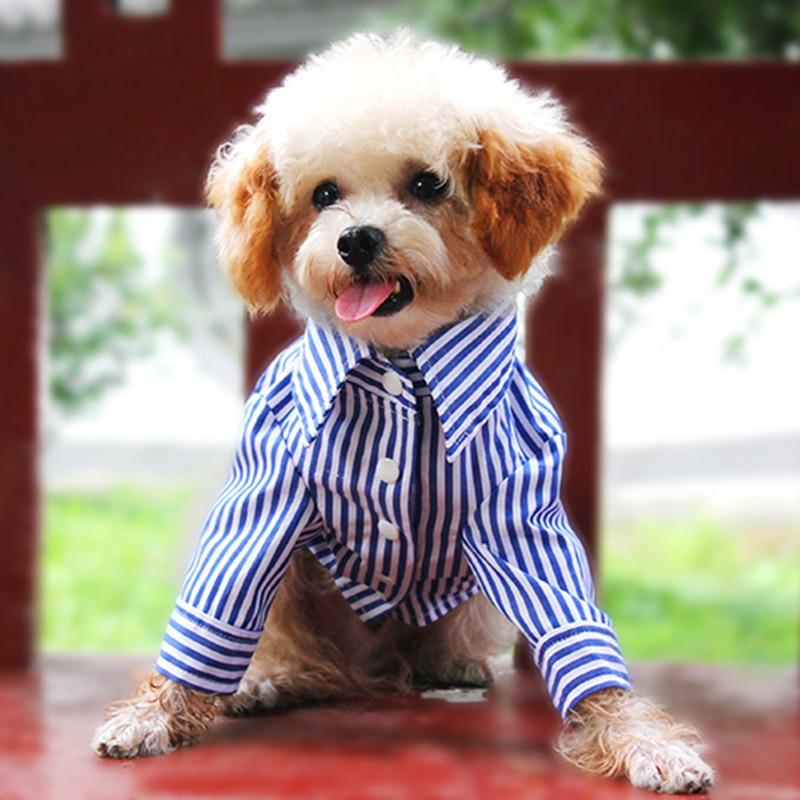 Bigeyedog Big Dog Raincoat Waterproof Clothing For Dog Pug French
