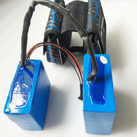 New Arriver 48V 15Ah 1000W Lithium ion Electric Bike Battery with battery bag and 54.6V 2A Charger Battery for Ebike