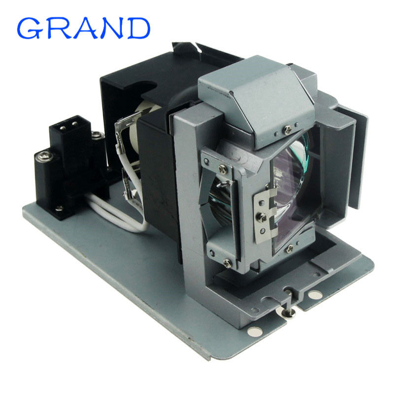 Compatible BL-FP240D 5811118543-SOT P-VIP 240/0.8 E20.9n For Optoma HD50 HD161X Projector Lamp With Housing