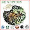 500 mg x 200 pcs Hot sale Saw palmetto/Serenoa repens/sabal Cápsula com frete grátis