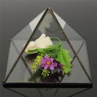 Newest Fashion Design 15x15x11cm Tabletop Succulent Plant Planter Box Irregular Glass Geometric Terrarium Flower Vases