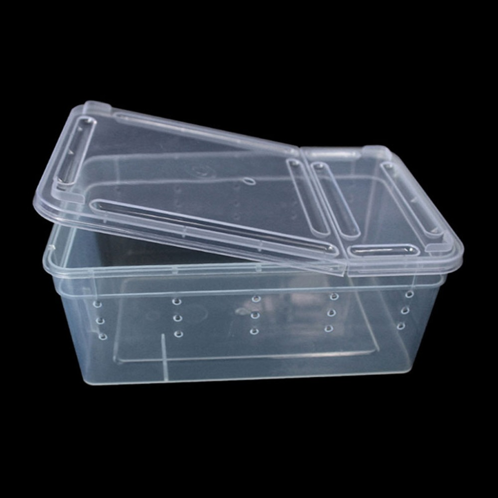 Free Delivery Terrarium For Reptiles Transparent Plastic Box Insect Reptile Transport Breeding Live Food Feeding Box