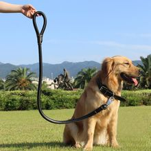 Pet Lead Rope Leather Collar For Big Dog Strong Traction rope Large and Leash Set Brown XL Metal Buckle