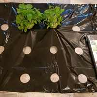 5~50m 0.02mm 5Holes Black Garden Film Hi-Quality Vegetable Plants Grow Film Protection Cover Greenhouse Perforated PE Mulch Film