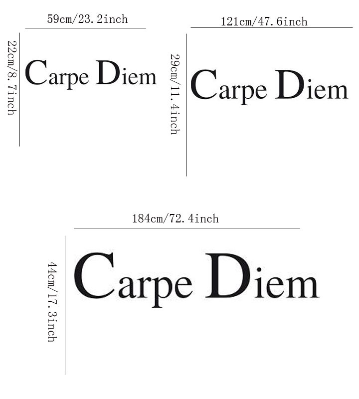 Wall Decals Quotes Carpe Diem Seizes The Day In Latin Home Decoration Wall Art Sticker