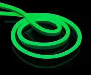Image 4 - 1 10m açık ve kapalı LED aydınlatma esnek LED Neon işık SMD 2835 120 leds/M LED şerit halat ışık su geçirmez IP68 DC12V adaptörü ile
