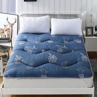Slow Cactus Queen Mattress Tatami Mat Big Size Thickness for Bedroom Sleeping on Floor Mat Folding Mats Without Pillows