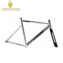fixed gear bike frame 53cm 55cm 58cm TYRANS T2 FRAMESET TRACK fixie frame+carbon fiber fork fixed gear frameset fixie bike