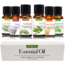 100% PURE & NATURAL ESSENTIAL OILS 6 in 1 Gift Kit Certified 10ML FREE SHIPPING цена