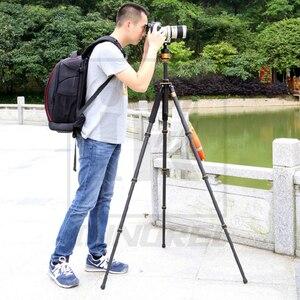 Image 4 - QZSD Q1000C Carbon Faser Professionelle Stativ 45mm Panorama Kugelkopf 28mm Rohr 15 kg Last Kapazität Luxus Stehen Für DSLR Kamera